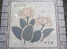 私の育った埼玉県